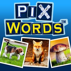 PixW300x300